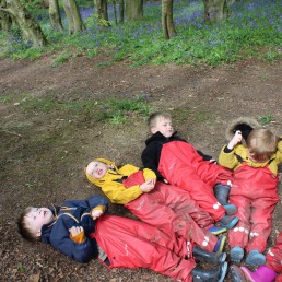Looking up at the trees at our Forest School