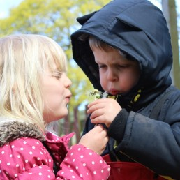 Sharing a dandelion clock at Forest School